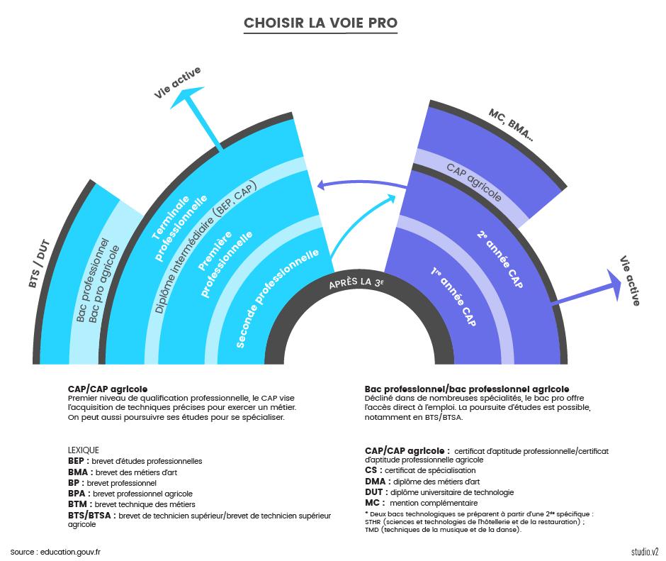 17 Schema Voie Pro V2